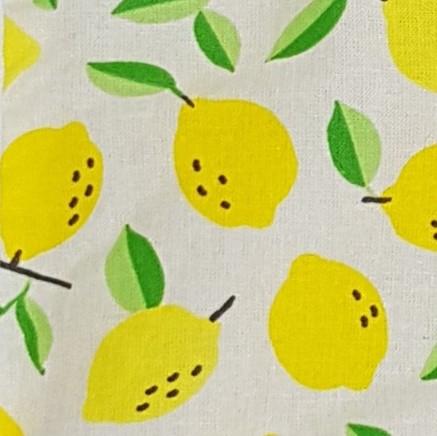Citrons jaune fond blanc